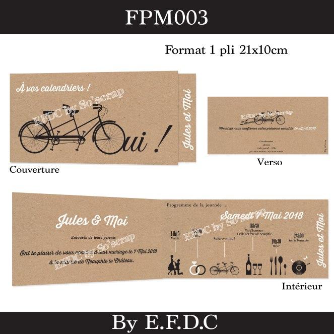 FPM003
