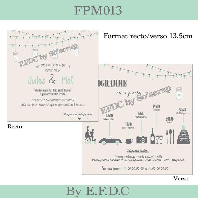 FPM013