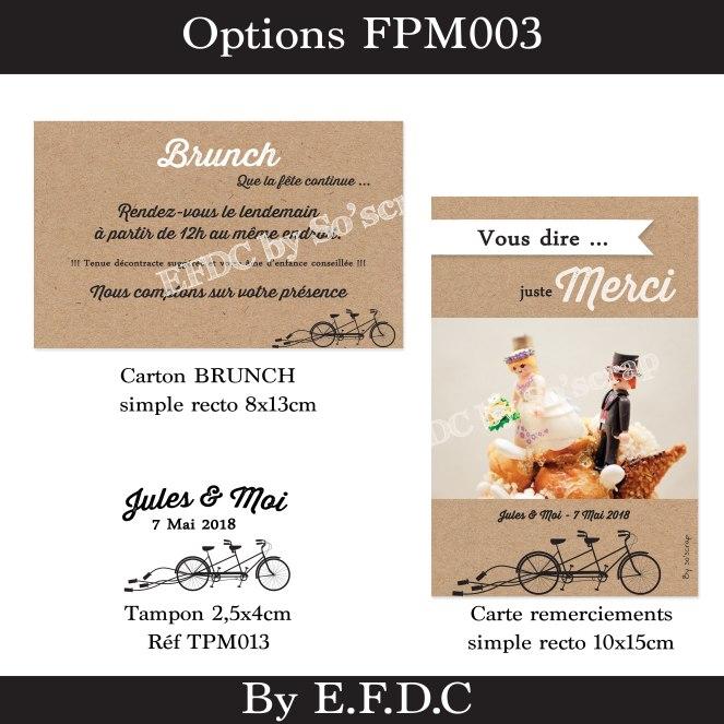 option-FPM003