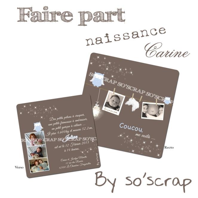 #fairepartnaissancehiboux