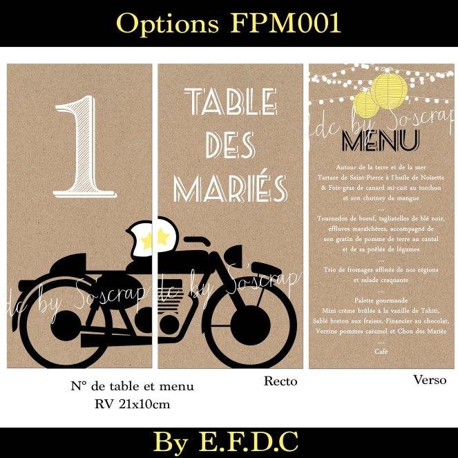 option 3 FPM001
