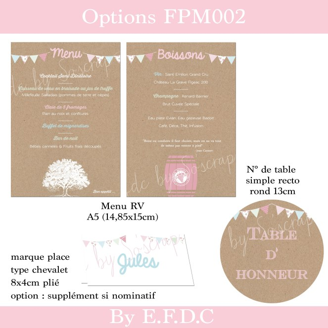 option 3 FPM002